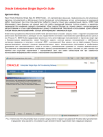 Oracle Enterprise Single Sign