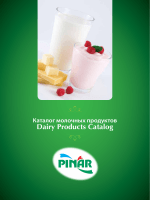 Dairy Products Catalog