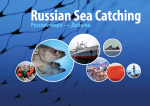 Russian Sea Catching LLC - Русское Море