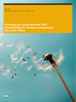 SAP BusinessObjects Analysis, выпуск для