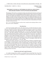 The impact of social networks on spousal influence strategies during