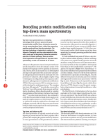 Decoding protein modifications using top