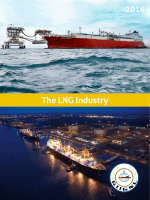 The LNG Industry in 2014